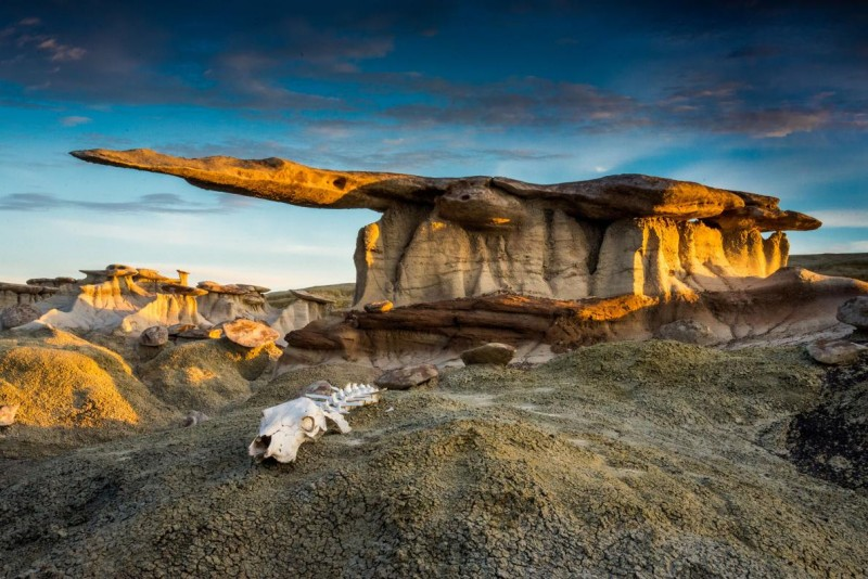 8 Winning Images Capture The Beauty Of Protected Lands