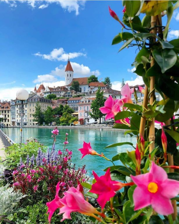Spring In Thun, Switzerland